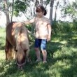 Little girl with pony horse — Stock Video #56824797