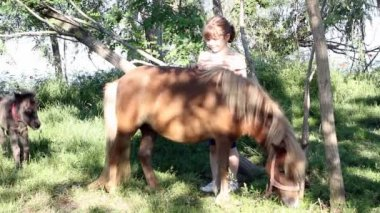 Little girl with pony horse and foal — Wideo stockowe