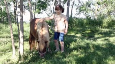 Little girl with pony horse — Stock Video
