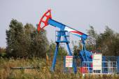 Oil pump jack on windy field — Stockfoto