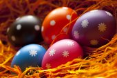 Colored Easter eggs in the nest — Стоковое фото