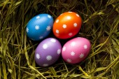 Colored Easter eggs in the nest — Stockfoto