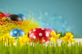 Colored Easter eggs and daffodils on blue background — Zdjęcie stockowe