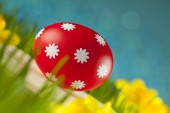 Colored Easter eggs on blue sky background — Stock Photo