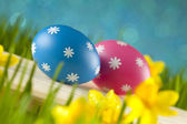 Colored Easter eggs on blue background — Stok fotoğraf