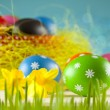 Colored Easter eggs and daffodils on blue background — Stock Photo #67805819
