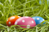 Colored Easter eggs in grass — Stock Photo