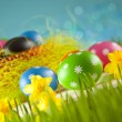 Colored Easter eggs and daffodils on blue background — Stock Photo #68856831