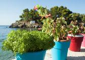 Parga - griekenland — Stockfoto