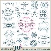 Kalligrafische design-elemente. — Stockvektor