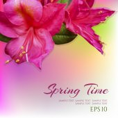 Spring time on floral background. — Stock Vector