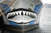 Bow of Boat — Stock Photo