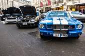 Mustangs — Stock Photo