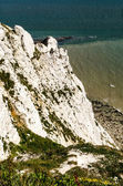 Seven sisters — Stock Photo