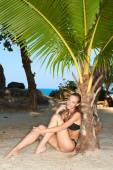 Sexy slender woman relaxing under a tropical palm — Stock fotografie