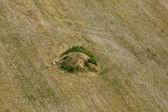Ancient Thracian mound — Stock Photo