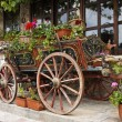 Ox Cart with Flowers in Veliko Tarnovo Bulgaria — Stock Photo #60200723