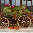Ox Cart with Flowers in Veliko Tarnovo Bulgaria — Stock Photo #60202141