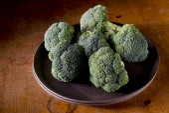 Fresh broccoli in plate — Stock Photo