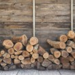 Pile of wooden log for setting fire — Stock Photo #68352157