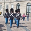 Постер, плакат: Denmark Copenhagen Changing of the guard of the Amalienborg Pa