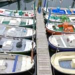 ������, ������: San Sebastian Boats