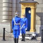 Stockholm. Changing of guard near a Royal Palace. — Stock Photo #60921781