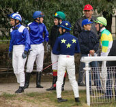 Before horse race. — Stock Photo