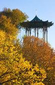 Chinese Arbor — Stock Photo