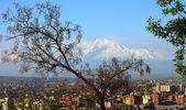 Yerevan city and Mount Ararat — Stock Photo