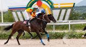Hästkapplöpning i pyatigorsk. — Stockfoto