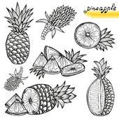 Pineapples set — Vetor de Stock