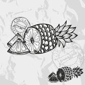 手工绘制的水果 — 图库矢量图片