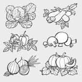 手拉长的蔬菜 — 图库矢量图片