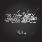 Ručně tažené ořechy — Διανυσματικό Αρχείο