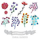 Watercolor floral elements — Stock Vector
