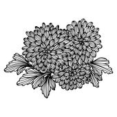 Floral bouquet — Stock Vector