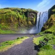 Skogafoss waterfall in Iceland. — Stock Photo #65932601
