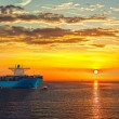 Container ship — Stock Photo #56464127