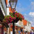 Lamp post with flower basket — Stock Photo #61533547