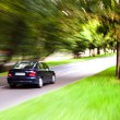 Car moves on road  — Stock Photo #67063533
