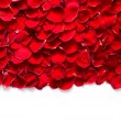 Red rose petals background. — Stok fotoğraf #59805599