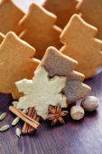 Biscotti di panpepato di Natale fatti in casa — Foto Stock