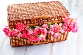 Picnic basket full of pink tulips — Stock Photo