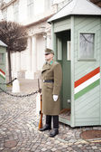 BUDAPEST, HUNGARY - DECEMBER 28: Ceremonial guard at the Preside — Stock Photo