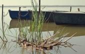 łodzie na jeziorze — Zdjęcie stockowe