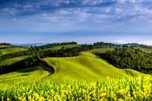 Toscana - Italien — Stockfoto