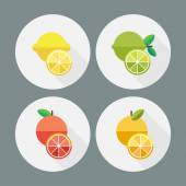 Fruit flat icons. — Stock Vector