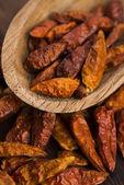 Hot birds eye peppers — Stock Photo