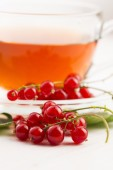Tea in cup and fresh red currant — Stock Photo